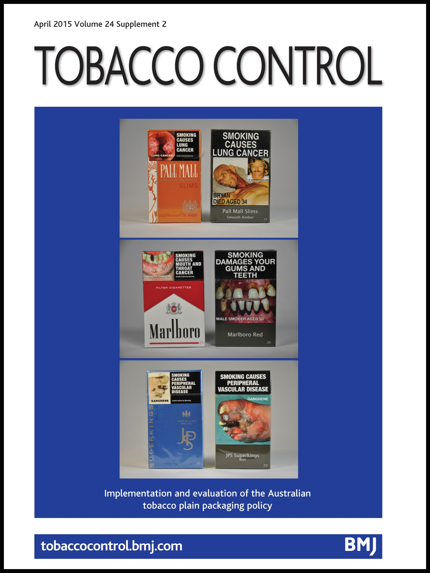 an introduction to the issue of the tobacco industry Introduction smoking in the mid this is the fourth edition of tobacco in australia: facts and issues chapter 10 the tobacco industry in australian society.